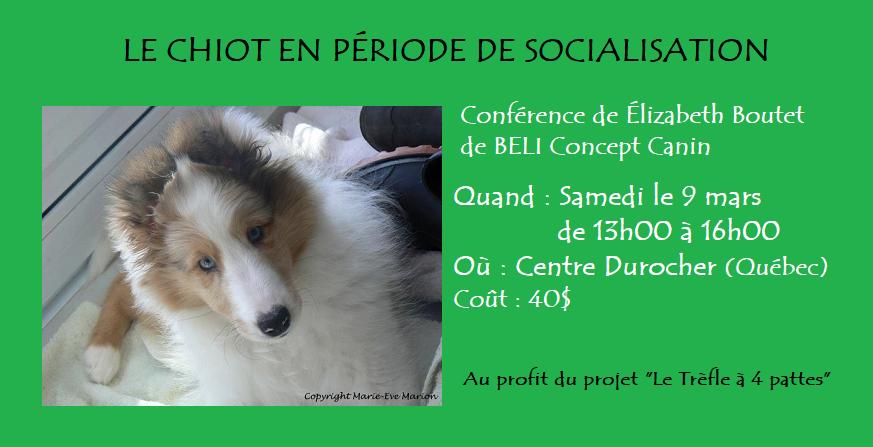 bannière_conference chiot