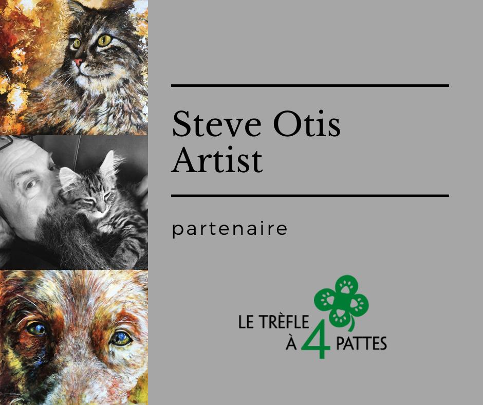 Steve Otis Artist